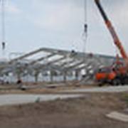 Строительство молочных ферм. фото