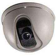 Цветная купольная видеокамера PANDA iDOME-420 фото