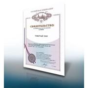 Внесение изменений в Государственный реестр товарных знаков и в свидетельство на товарный знак. фото