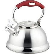 Чайник Bayerhoff BH-445 со свистком 2,7 л. фото