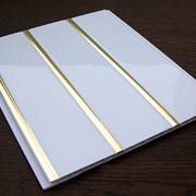 Пластиковые панели ПВХ Белые 8мм фото