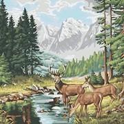 Раскраска по номерам Горный пейзаж фото