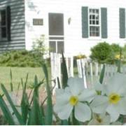 Моющие средства - Для Вашего дома и сада фото