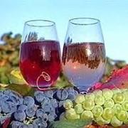Виноматериалы Молдова фото
