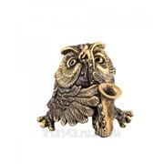 Сувенир Сова С саксофоном фото