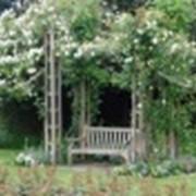 Стилевые сады фото