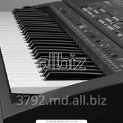 Клавишные инструменты фото
