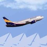 Дополнительные услуги авиакомпании фото
