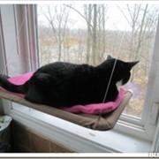 Лежанка подвесная для кошек Теплое местечко фото