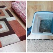 Химчистка мягкой мебели, ковров и ковролина в Минске фото