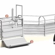 Оборудование для убоя, первичной переработки скота фото