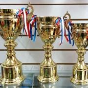Набор кубков (трофеи), наградные 2012 35705816 фото