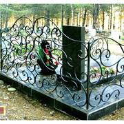 Ажурные кованые  оградки  - недорого, от ЗДК фото