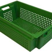 Ящик овощной фото