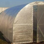 Пленка тепличная воздушно пузырчатая «ОАЗИС» фото