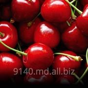 Вишня на экспорт Молдова фото