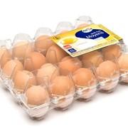 Яичная упаковка фото