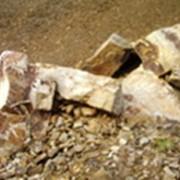 Камень валун фото
