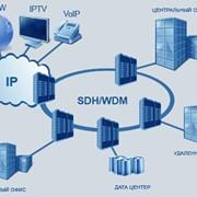 Транспортные сети SDH/DWDM фото
