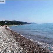 Автобусные туры на Черное море фото