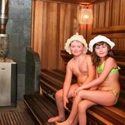 Баня на дровах с бассейном фото