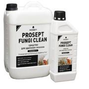 УдалитЕль плесени с минеральных поверхностей PROSEPT FUNGI CLEAN - концентрат 1:1, 5 литров фото