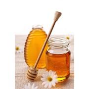 Мёд Таёжное разнотравье фото
