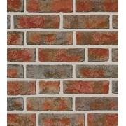 Клинкерная плитка Roben Formback buntgeflammt фото