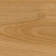 FF-1419 Бук Лучидо (Fine Floor) фото