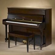 Пианино Essex EUP-116E фото