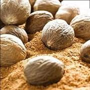 Эфирное масло мускатного ореха фото