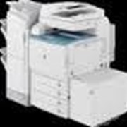 Копировально-множительная техника Xerox, Sharp, HP, Oki, Riso. фото