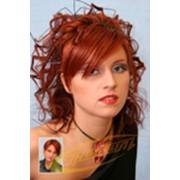 фото предложения ID 322918