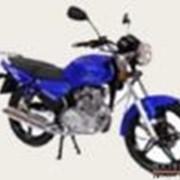 Мотоциклы STELS Delta 200 фото