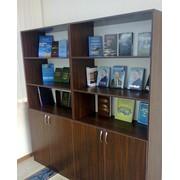 Изготовление мебели в офис г.Кызылорде фото