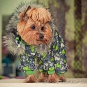 Комбинезон для собаки с капюшоном с длинным мехом, с трикотажными манжетами и горловиной