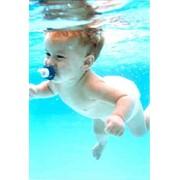 Обучение плаванию младенцев фото
