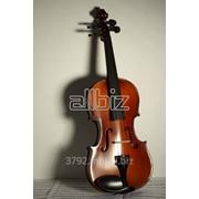 Струнные музыкальные инструменты фото