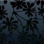 Художественное стекло фото