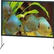 Экран проекционный MW Plana Fold Professional фото