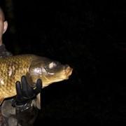 Обучение подводной охоте в Казахстане фото