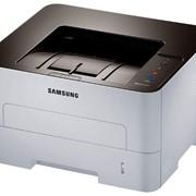 Принтер широкоформатный Samsung M2620D ч-б А4 фото