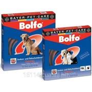 Ошейник для маленьких собак и кошек 35 см Bolfo фото