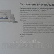 Тест-система для обнаружения респираторно-синцитиального вируса КРС BRSV фото