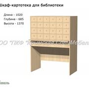 Шкаф-картотека для библиотеки 24028 фото