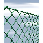 Сетка рабица с полимерным покрытием 50x50x2,5 фото