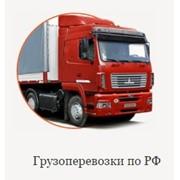 фото предложения ID 13655545