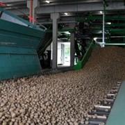 Оборудование для выгрузки картофеля фото