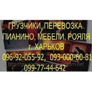 Перевозка Мебели Харьков, ПОпутная Перевозка, доставка, переезд мебель в Харькове. Перевезти мебель, холодиль фото