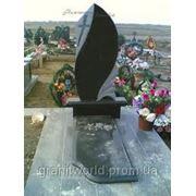 Памятники одинарные Житомир (Образцы №237) фото